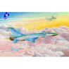 Trumpeter maquette avion 02811 SUKHOI SU-15TM FLAGON-F 1/48