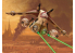 Revell maquette Star Wars 03613 Republic Gunship 1/173