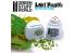 Green Stuff 363537 Perforatrice de Feuilles Modélisme BLEU CLAIR tilleul poirier