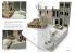 Ak Interactive livre AK8000 FAQ Dioramas en Anglais par Ruben Gonzalez