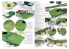Ak interactive Magazine Tanker AK4823 N°5 Boue et Terre en Anglais