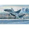 """TRUMPETER maquette avion 03226 MIG-29UB """"FULCRUM"""" ARMEE DE L'AIR RUSSE 2005 1/32"""