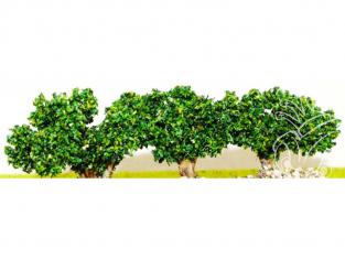 Fr Décor 44592 1 pied (cep) de vigne verte 40mm tronc bois grande hauteur made in France