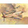 TRUMPETER maquette avion 02275 P-51 D MUSTANG 1/32