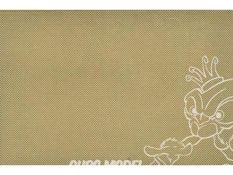 Hauler accessoire HLX48256 plaque gravée type Allemande Early 1/48