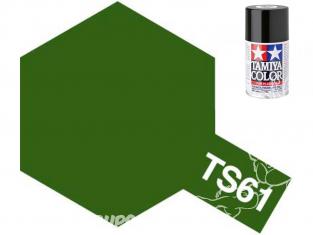 peinture maquette tamiya bombe ts61 vert nato mat
