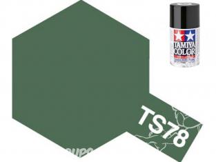 peinture maquette tamiya bombe ts78 gris moyen 2