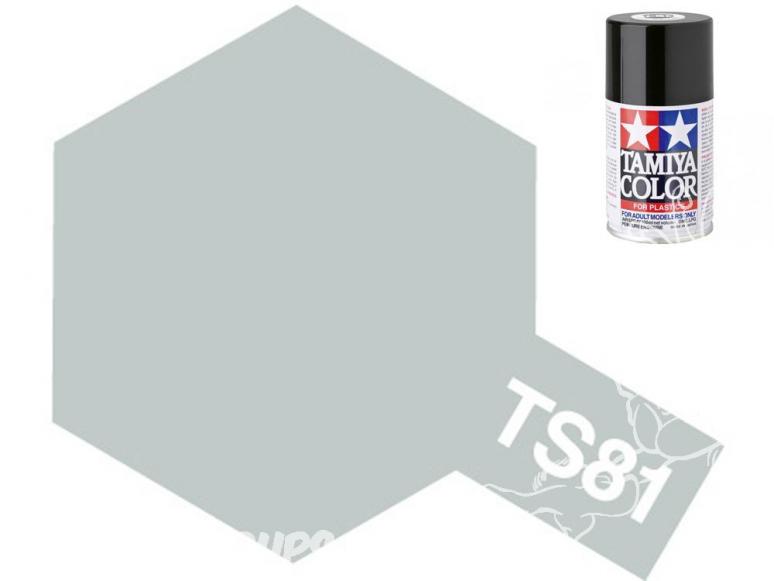 peinture maquette tamiya bombe ts81 Gris marine Britanique