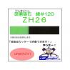 Oups ZH26 Lame à poncer 120 pour Cutter à Ultrasons