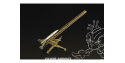 Hauler Missile HLP72025 F-55 FEUERLILIE avec rampe de lancement 1/72