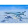 """TRUMPETER maquette avion 01687 TUPOLEV Tu-128M """"FIDDLER"""" 1985 1/72"""