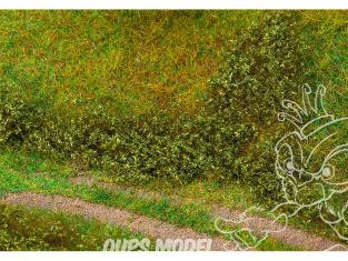 Faller végétation 181618 Feuillage de terrain, vert été