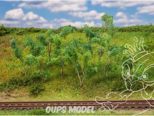 Faller végétation 181409 Arbres/Arbustes de lisière de bois