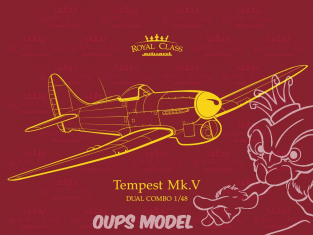 EDUARD maquette avion R0018 Tempest Mk.V Dual combo Royal Class 1/48
