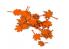 AK interactive Feuilles ak8113 Feuilles d'érable rouge 1/35