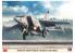 """HASEGAWA maquette avion 02304 MiG-25RBT Foxbat """"Armée de l'Air Russe"""" 1/72"""