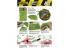 AK interactive végétation ak8138 Set plantes de la Jungle 1/35 - 1/32 - 1/48