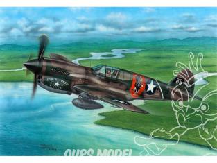 Special Hobby maquette avion 72338 P-40E Warhawk 'Griffes et Dents' 1/72
