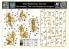 Master Box maquette figurines 35199 LE CLAN DES CRANES DE NOUVELLES AMAZONES SERIE DESERT POST-APOCALYPSE 1/35