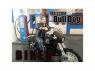 American Diorama figurine AD-23914 Motard Bull Dog 1/24