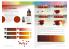 Ak Interactive livre AK294 Comment travailler avec les couleurs et transitions acryliques en Espagnol