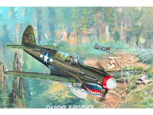 Hobby Boss maquettes avion 02212 P-40N WarHawk 1/32