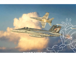 Italeri maquette avion 2791 F/A-18 E SUPER HORNET 1/48