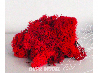 Fr Décor 128 Lichens Rouge