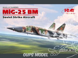 Icm maquette avion 48905 Mikoyan-Gourevitch MiG-25 BM avion d'attaque soviétique 1/48