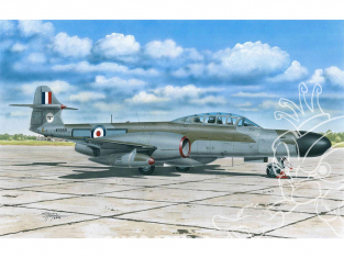 Special Hobby maquette avion 72360 A.W. Meteor NF MK.12 1/72