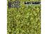 Green Stuff 362639 Feuilles Naturelles Modélisme Vert Printemps