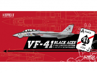 Great Wall Hobby maquette avion S7202 F-14A VF-41 Black Aces Edition limitée 1/72