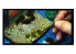 Vallejo Touffe sauvage SC416 Vert mixte hauteur de l'herbe 6mm