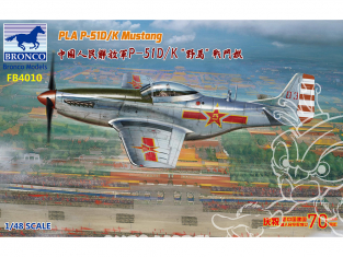 Bronco maquette avion FB4010 P-51D/K Chinois 1/48