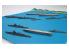 Fujimi maquette bateau 401508 xOperation Coral Sea Battle Set 1/3000