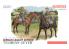 dragon maquette militaire 6046 Division de cavalerie Allemande Florian Geyer 1/35