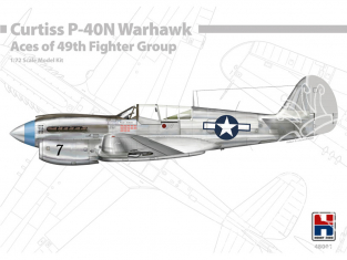 Hobby 2000 maquette avion 48001 P-40N Warhawk Aces of the 49th FG 1/48