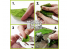 Green Stuff 508277 Tapis d'Herbe Vert Clair