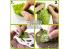 Green Stuff 508413 Découpe de Tapis d'Herbe Prairie Pourpre