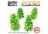 Green Stuff 508472 Plantes en Papier Cannabis 1/48 - 1/35 - 1/32