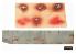 Liang Model 0005 Pochoir aérographe éclaboussures de sang 1/35 - 1/48 - 1/72