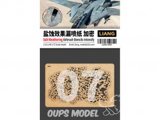 Liang Model 0007 Pochoir aérographe weathering sel Intense 1/35 - 1/48 - 1/72