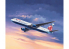 Revell maquette avion 03862 Boeing 767-300ER British Airways Chelsea Rose 1/144