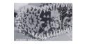 afv club maquette af35020 CHENILLES TYPES T36E6 1/35