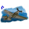 "Hobby Boss maquette avion 80252 P-40N ""Warhawk"" 1/72"