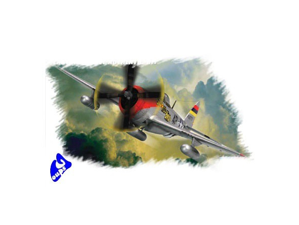 "Hobby Boss maquette avion 80257 P-47D ""Thunderbolt"" 1/72"