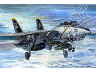 TRUMPETER maquette avion 03202 GRUMANN F-14B SUPER TOMCAT 1/32