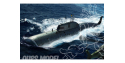 HOBBY BOSS maquette sous marin 83525 Russian Navy Akula Class Attack Submarine 1/350
