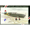 Special Hobby maquette avion 48019 Nardi F.N 305 1/48
