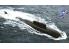 HOBBY BOSS maquette bateau 87021 SSGN OSCAR II Class KURSK 1/700